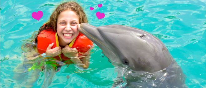 Dolphin kisses